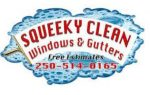 Squeeky Clean Windows and Gutters